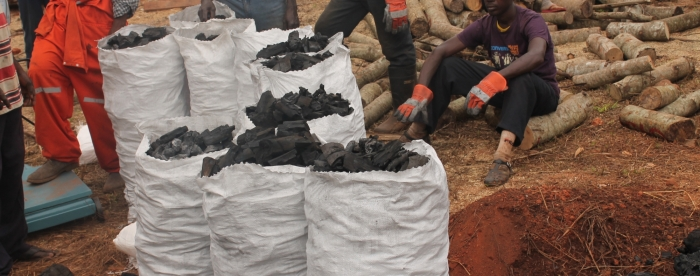 Property, access and exclusion along the charcoal commodity chain in Ghana – the AX project