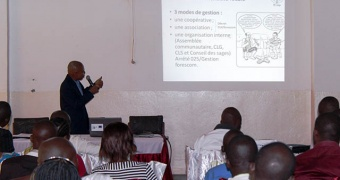 The role of civil society in the implementation of community forestry in the DRC