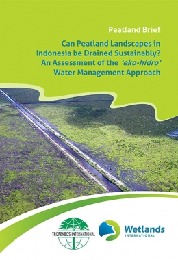 Can Peatland Landscapes in Indonesia be Drained Sustainably? An Assessment of the 'Eko-Hidro' Water Management Approach.