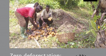 Impact investments in agricultural and forestry smallholders: it can be done!
