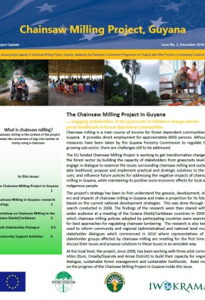 The Chainsaw Milling Project, Guyana. Project Update 2, December 2010