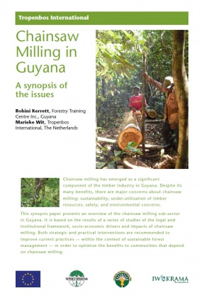 Chainsaw milling in Guyana: A synopsis of the issues