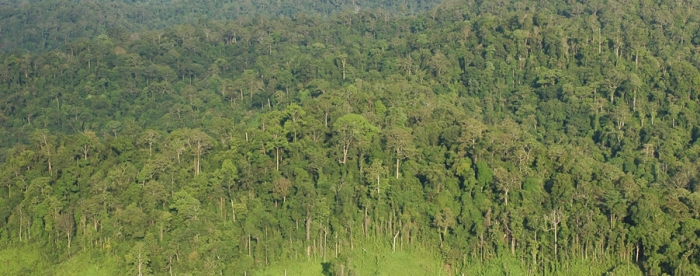 Mainstreaming the High Conservation Area Approach in Indonesia
