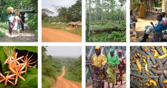 gallery-collage-congo.jpg