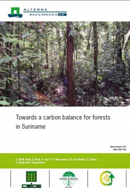 Towards a carbon balance for forests in Suriname