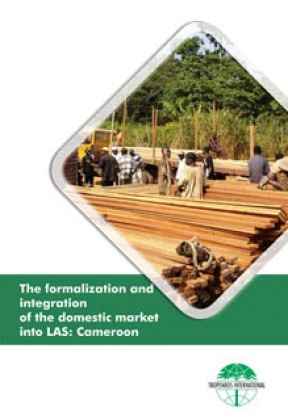 The formalization and integration of the domestic market into LAS: Cameroon