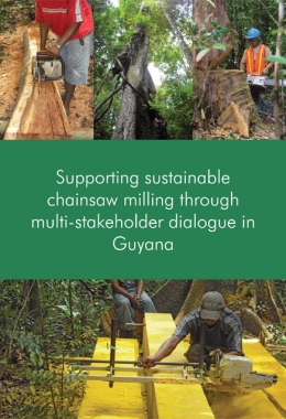 Supporting sustainable chainsaw milling through multi-stakeholder dialogue in Guyana