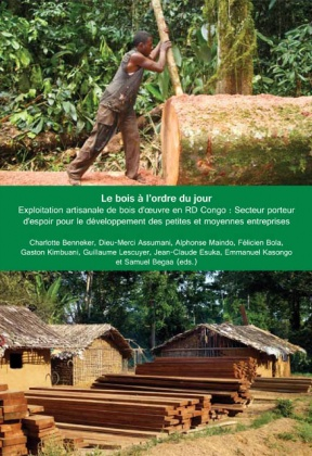 Wood on the agenda: Artisanal logging in DR Congo