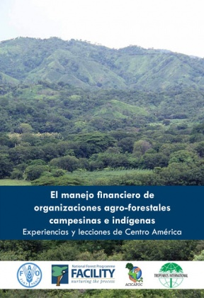 The financial management of rural and indigenous agroforestry organizations: Experiences and Lessons from Central America