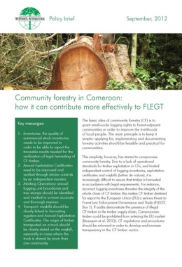 Community forestry in Cameroon: how it can contribute more effectively to FLEGT