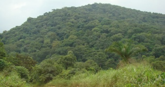 TBI Ghana lauded for her contribution to Forest Governance in Ghana