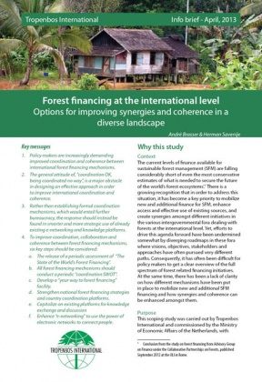 Forest financing at the international level. Options for improving synergies and coherence in a diverse landscape