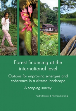 Forest financing at the international level. Options for improving synergies and coherence in a diverse landscape. A scoping survey