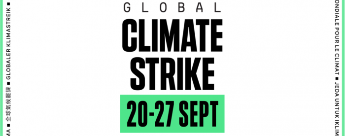 Tropenbos International joins the climate strike