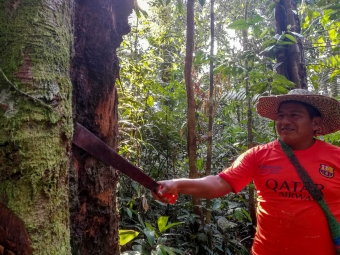 SUB: Obeimar, Indigenous man in the forest of Guayabal, Solano, Colombia