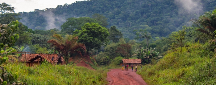 A bumpy road — forest concessions of local communities in DR Congo - In conversation with Alphonse Maindo