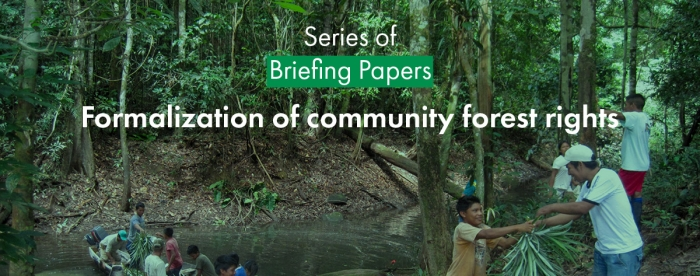 Tropenbos International launches briefing papers on the formalization of community forest rights