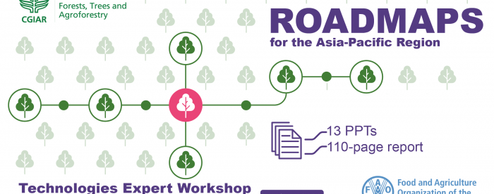 "Report on expert online workshop ""Innovative technologies for sustainable forestry and sustainable forest management in Asia and the Pacific"""