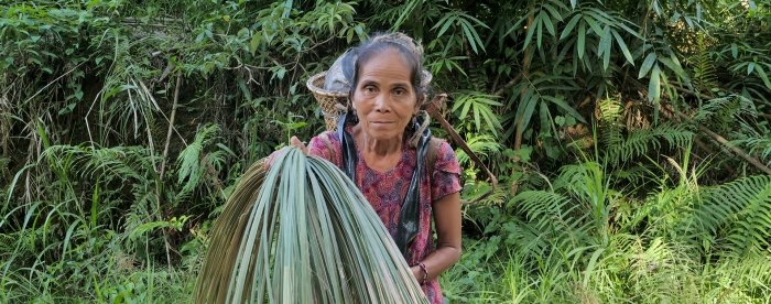 Forests for a Just Future - Green Livelihoods Alliance